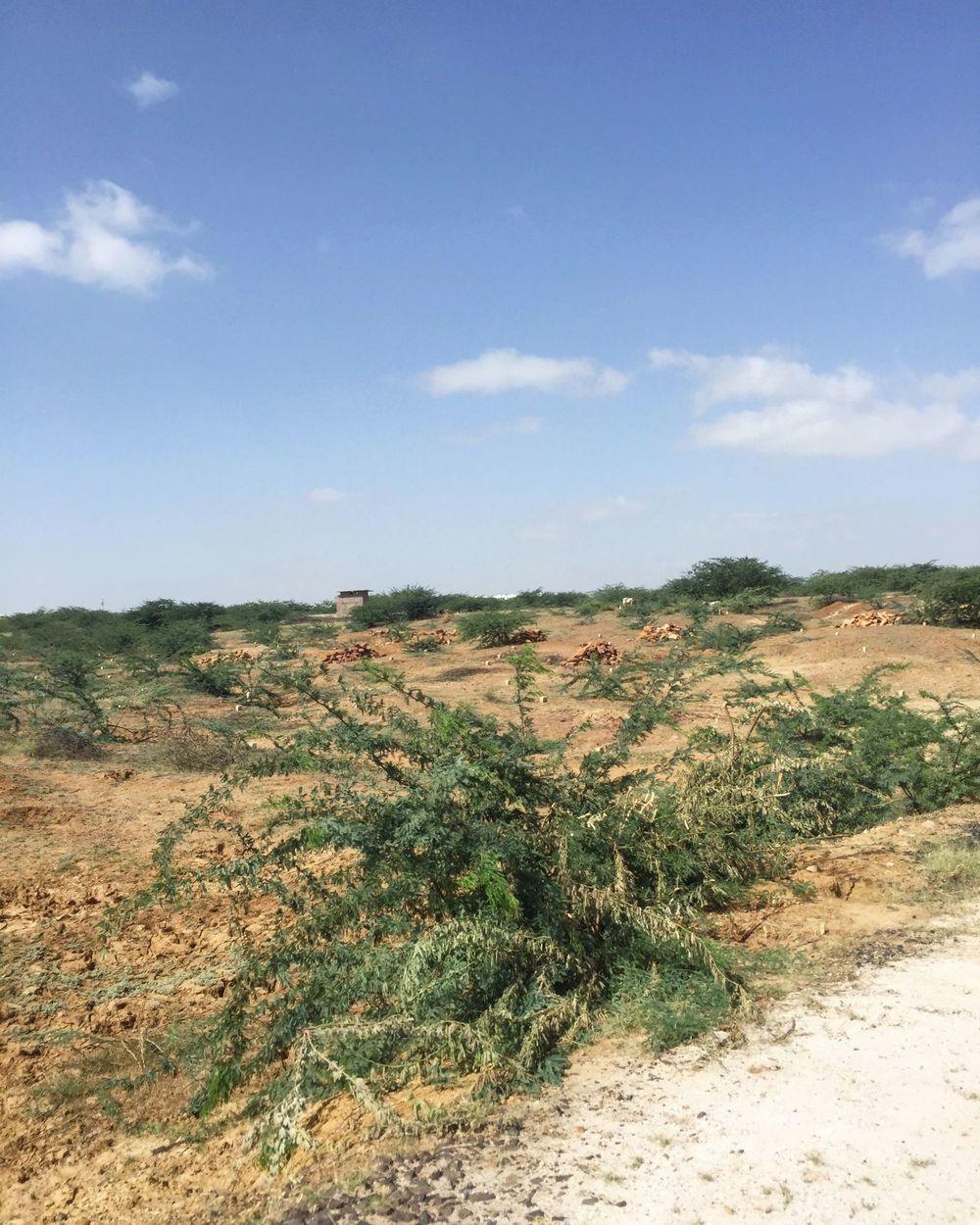 The desert outside Bhuj