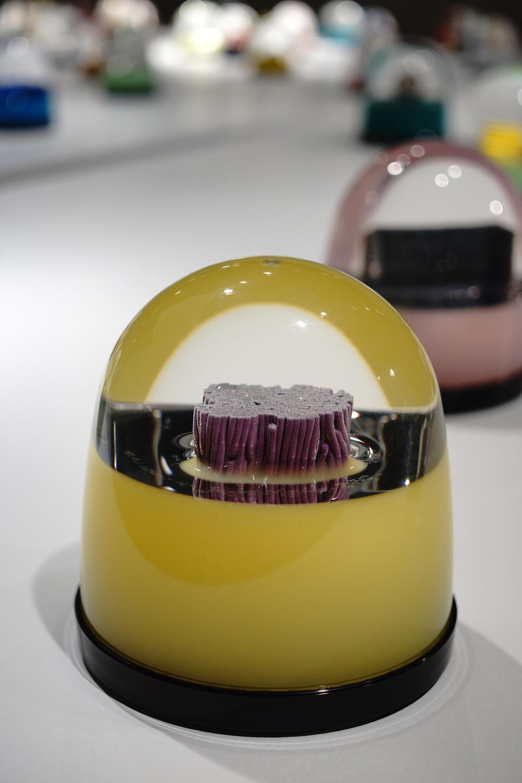"""Purple Bristles Globe"""