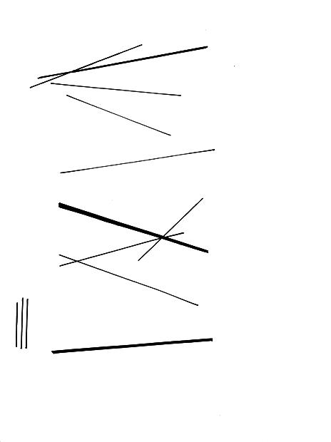 lines-4.jpg