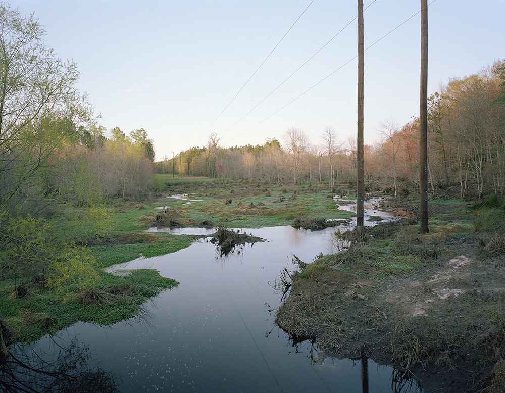 Stream Just Below King American Finishing's Outfall Pipe, Screven Count