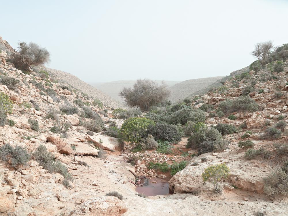 Watering Hole, Wadi Zitoune Battlefield, Libya