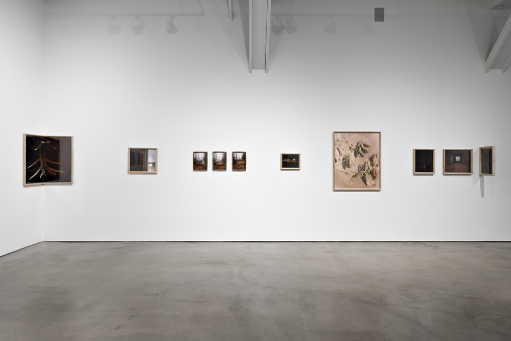 Installation view of Angela Martin Berry's exhibition
