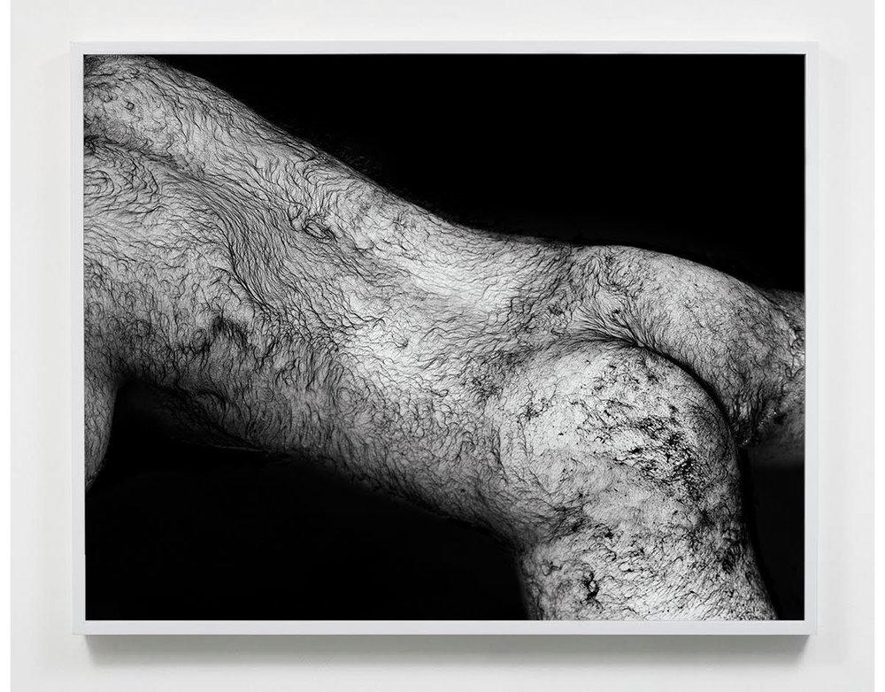 © Mark McKnight @ James Harris Gallery
