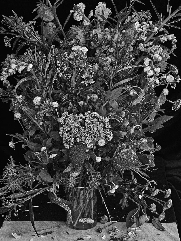 Flowers for Lisa #26, 2016. © Abelardo Morell