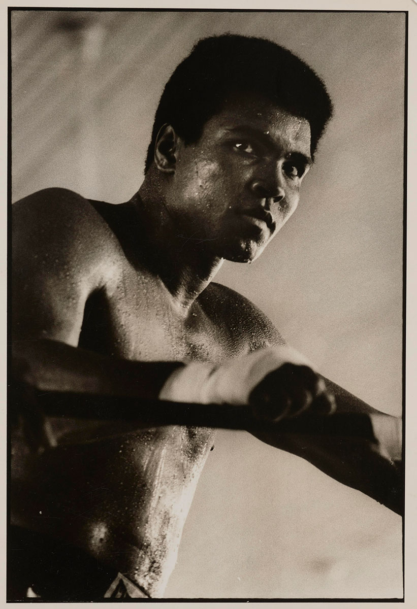 Muhammad Ali by Sonia Katchian