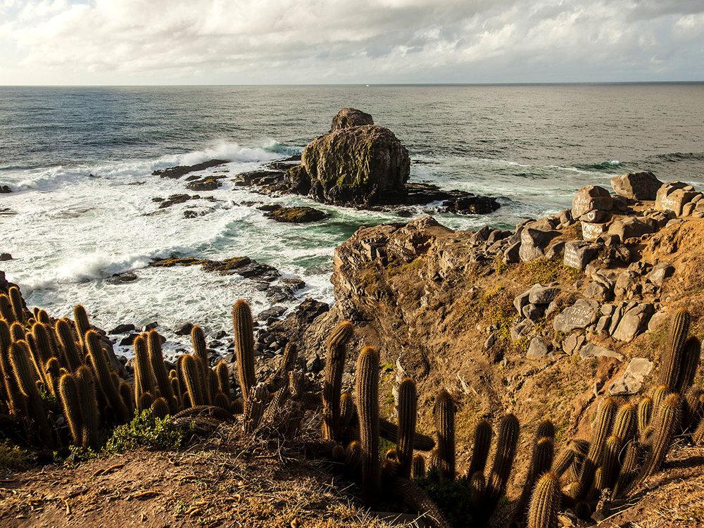 Lat 34: Chile - Punta de Lobos. © Malika Sqalli