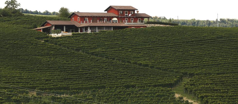 Renato Corino's modern facility in La Morra with views of some of the commune's most famous crus.