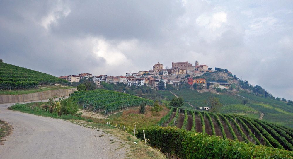View of La Morra from the south.If you visit, take in the view of the vineyards from the Piazza Castello in the center of town, and then visit Corino's new cellar perched atop the famous Arborina vineyard.