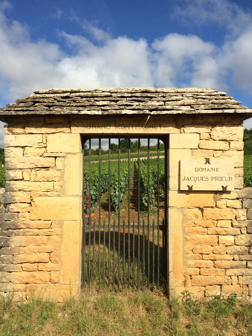 A short walk from La Maison d' Olivier Leflaive takes you through beautiful vineyards including legendary Montrachet