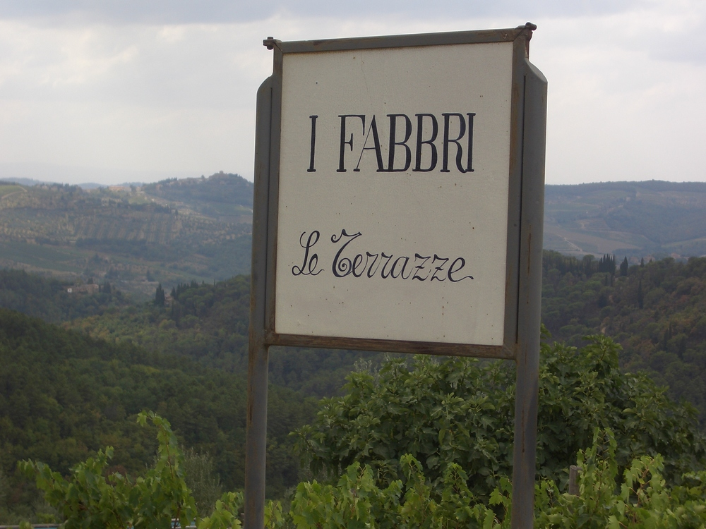 on the drive up to Ristoro di Lamole, you will pass beautiful vineyards and olive groves