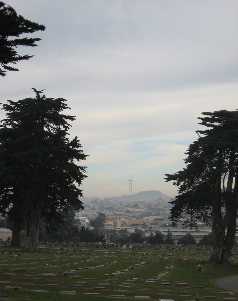 From Emperor Norton's grave, there is a view of Sutro Tower perfectly framed between two beautiful trees.