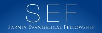 SEF logo rectangle.jpg