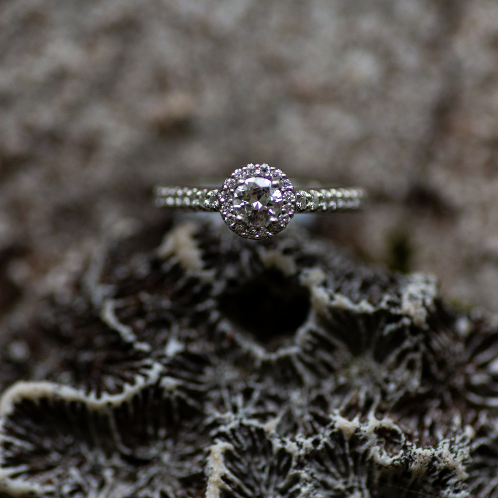 I do have a macro. So if you need me to play with the rings and jewelry, I'm game. Taken for Justin Hankins Photography.