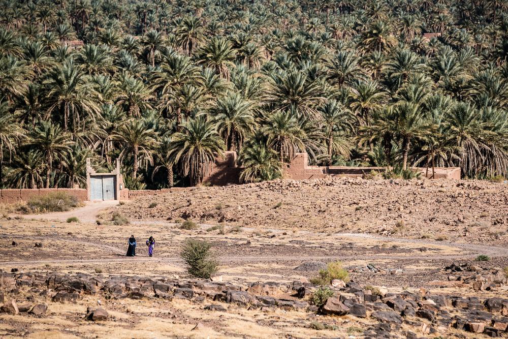 morocco by jb rasor-1-2.jpg