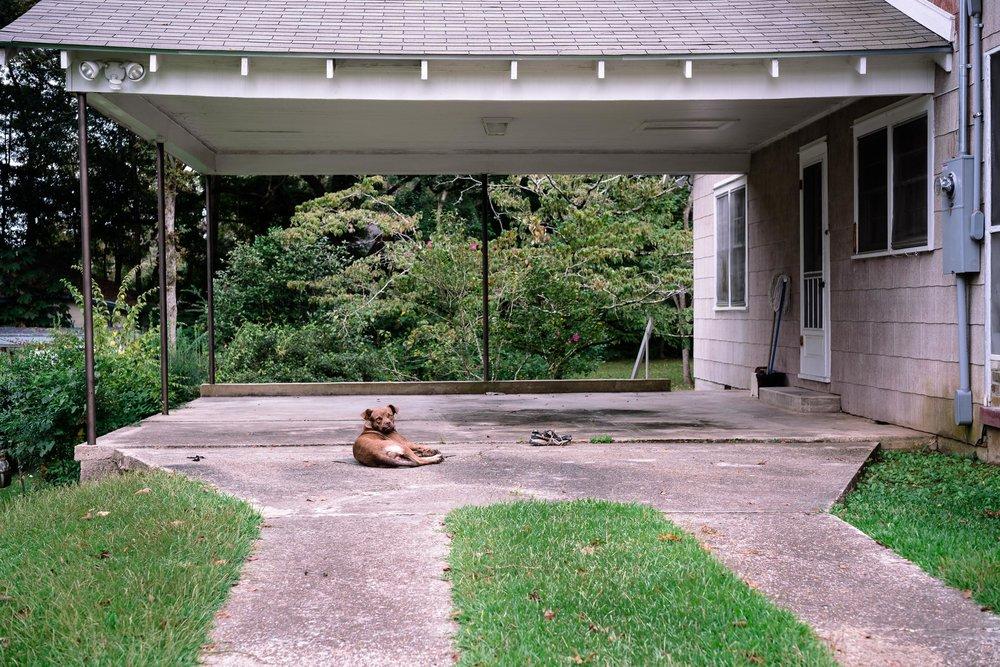 Southern Mississippi-8.jpg