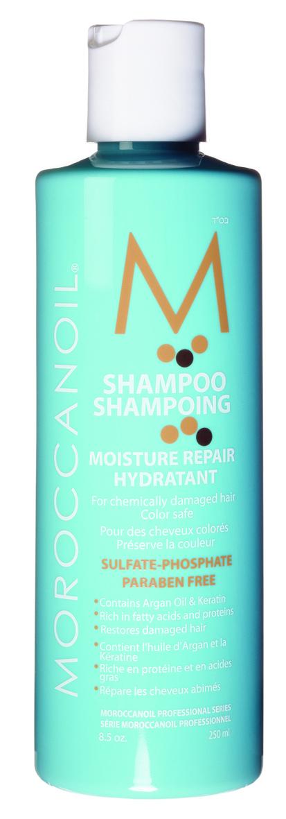 Moisture_repair_shampoo_-_250ml_-_jpg_-_cmyk