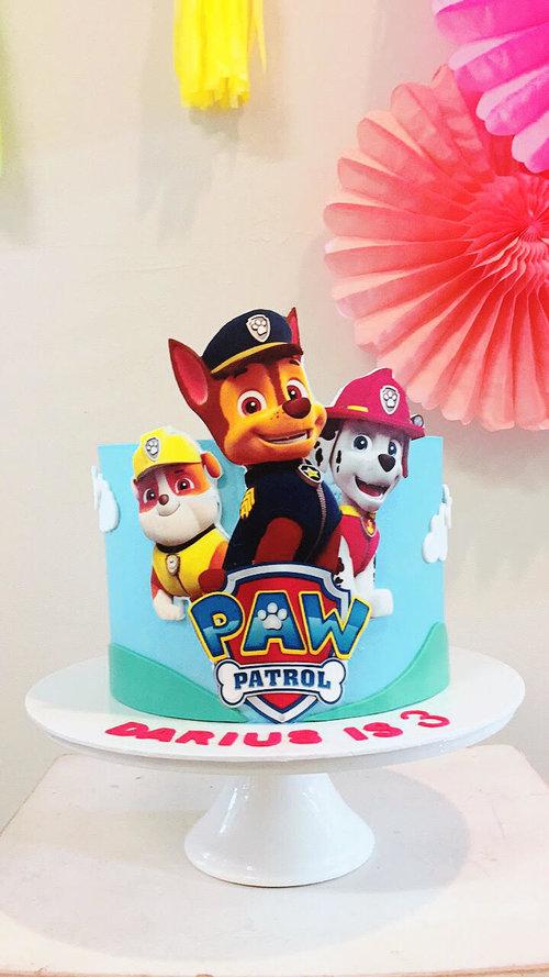 Darius Paw Patrol Cake