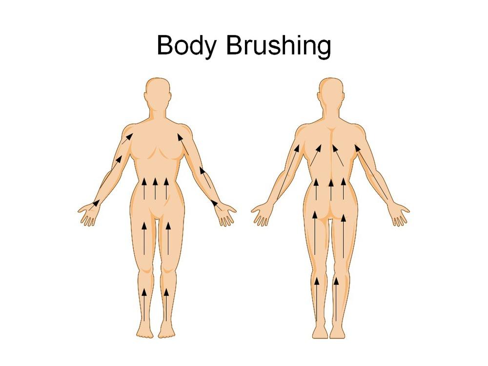 Fuente foto:http://thyroidsupportonline.com/how-to-get-beautiful-skin-body-brushing/