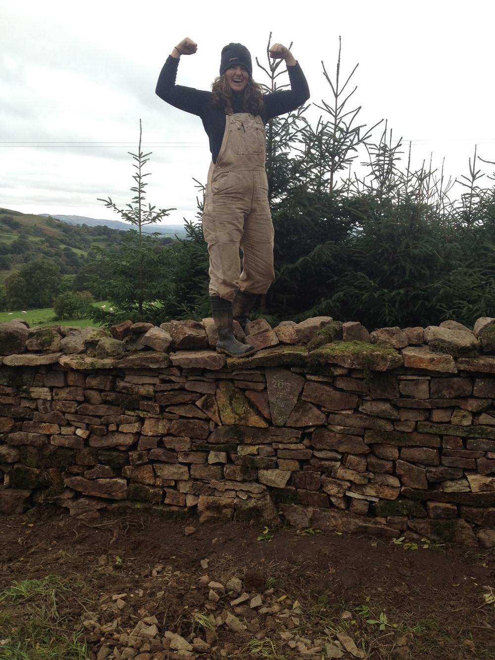 Farm wall restoration