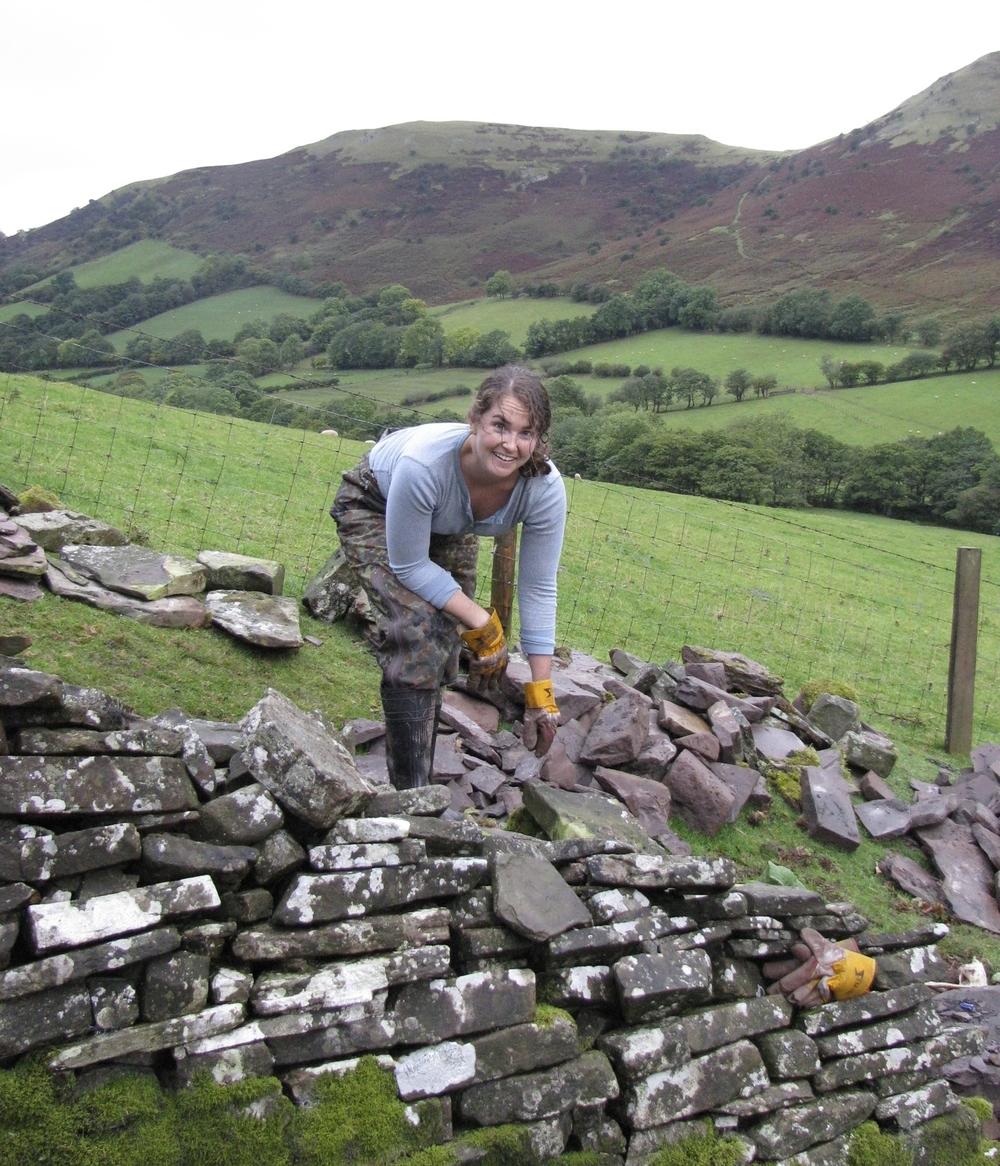 Stripping out an old wall for restoration on a farm in the Rhiangoll, Wales, 2009