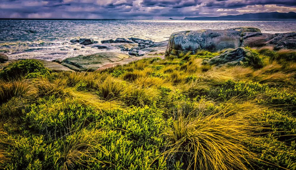 _Flinders Island copy.jpg