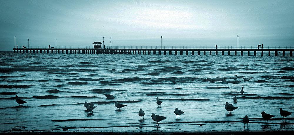 Pier View2.jpg
