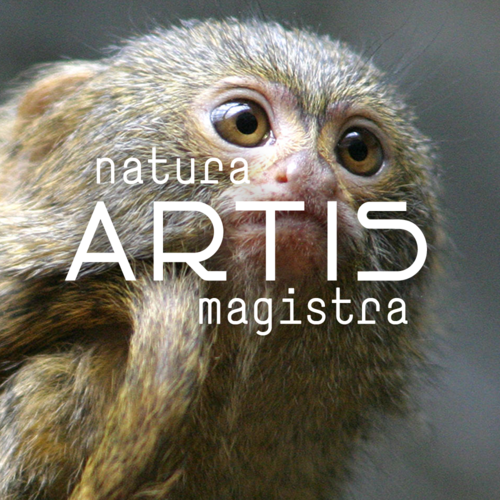 artis-10-forgotten-animals-thumb.png