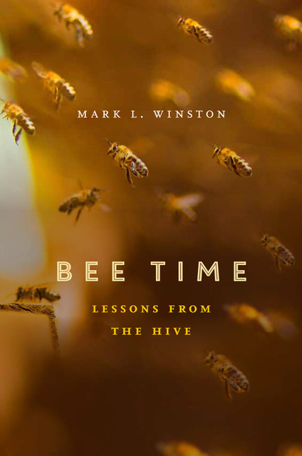 Bee-Time-Lessons-from-the-Hive-Mark-Winston.jpg
