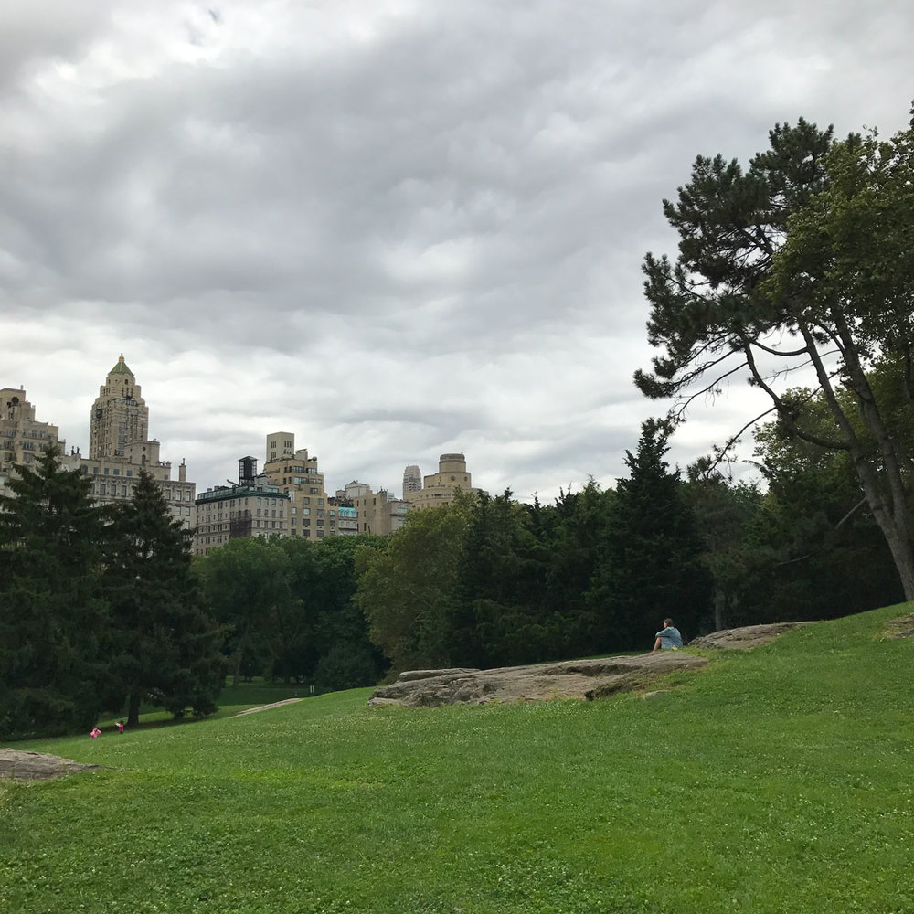 Central-Park-Olmsted-KMDG-NY-1.jpg