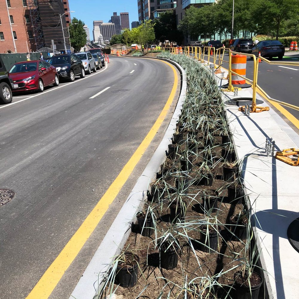 Kendall-Square-Median-Planting-Construction_KMDG_7895.jpg