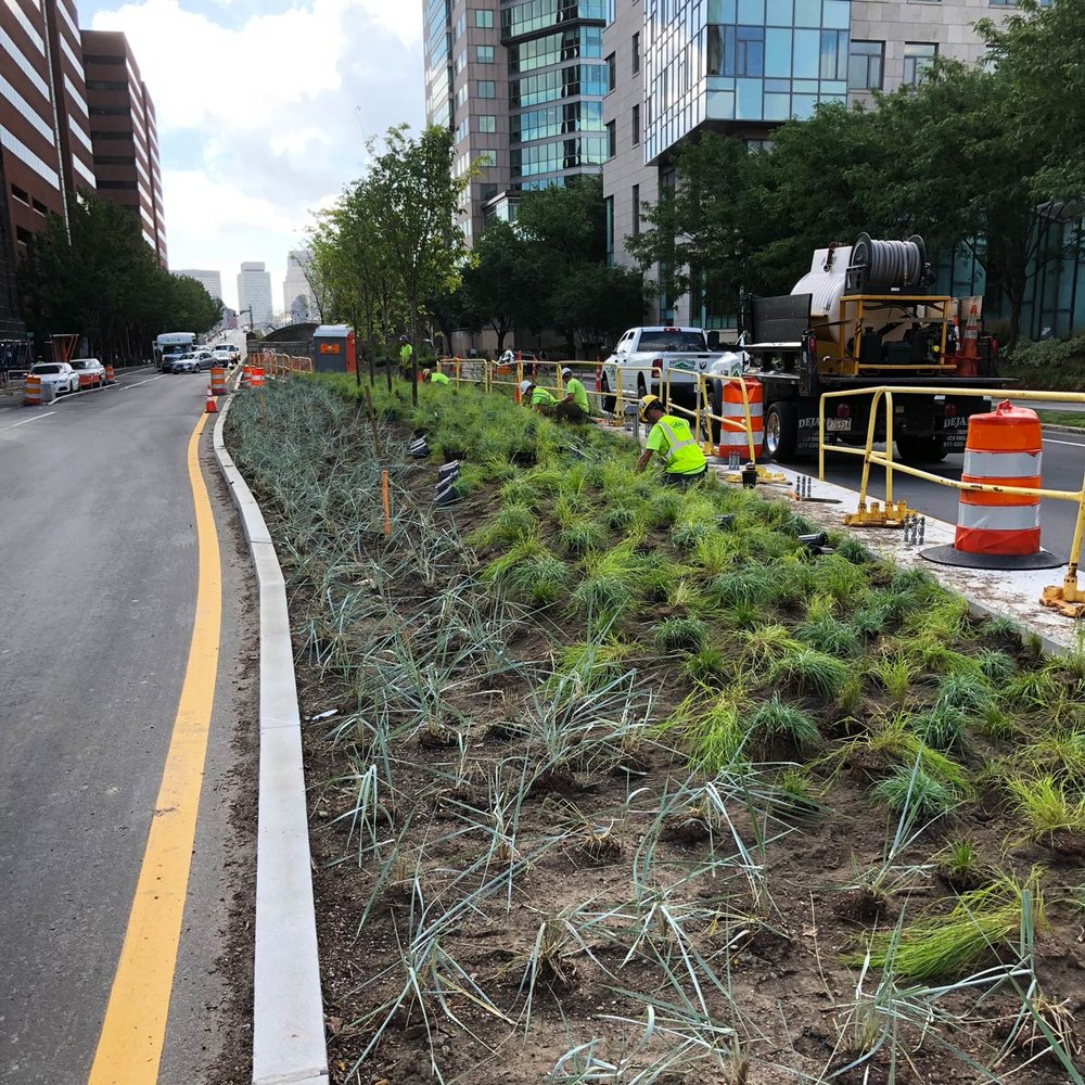 Kendall-Square-Median-Planting-Construction_KMDG_7966.jpg