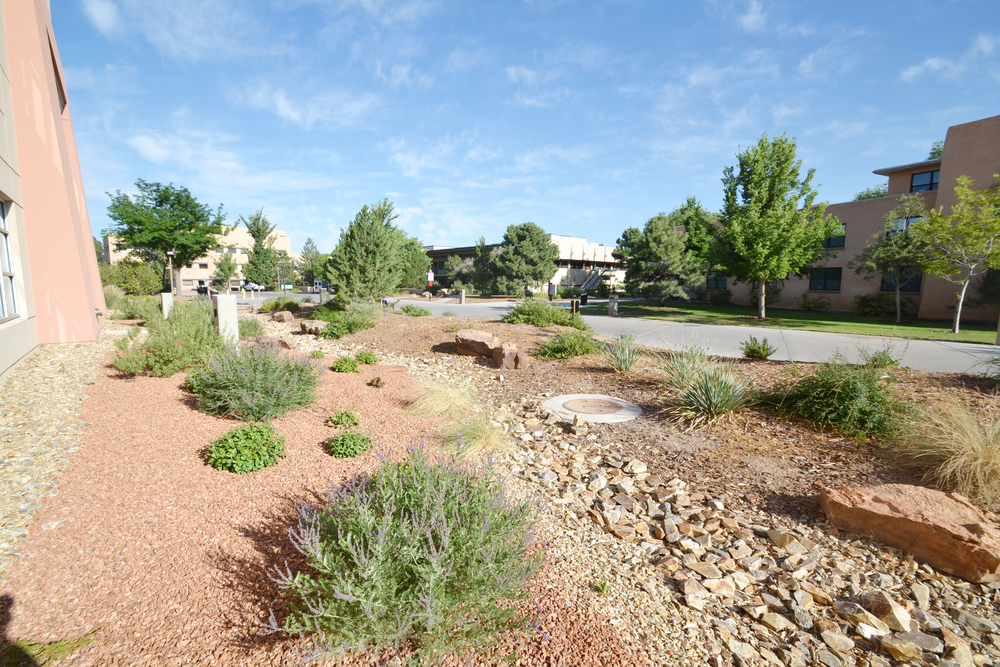 Stormwater detention area incorported seamlessly into landscape design