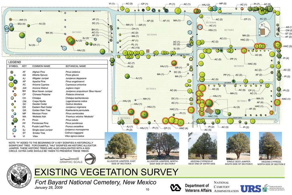 Ft Bayard Existing Vegetation Survey.jpg