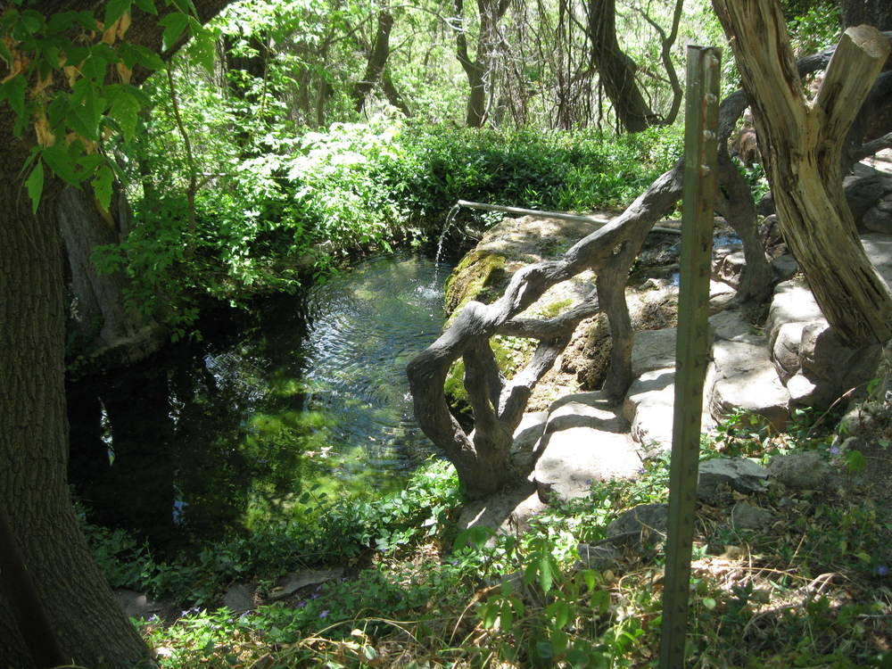 The springs at Carlito Springs