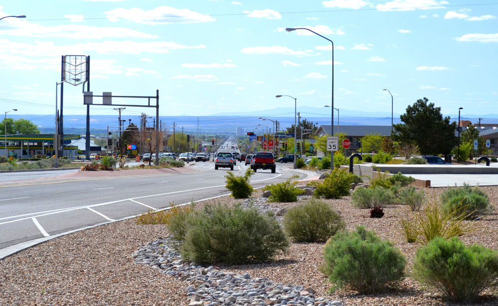 Drought tolerant plantings that enhance the design and provide visual relief for drivers on the road