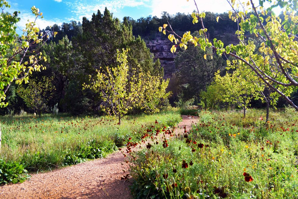 Pecos-orchard_web.jpg