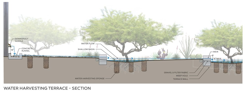 Terrace Section.jpg