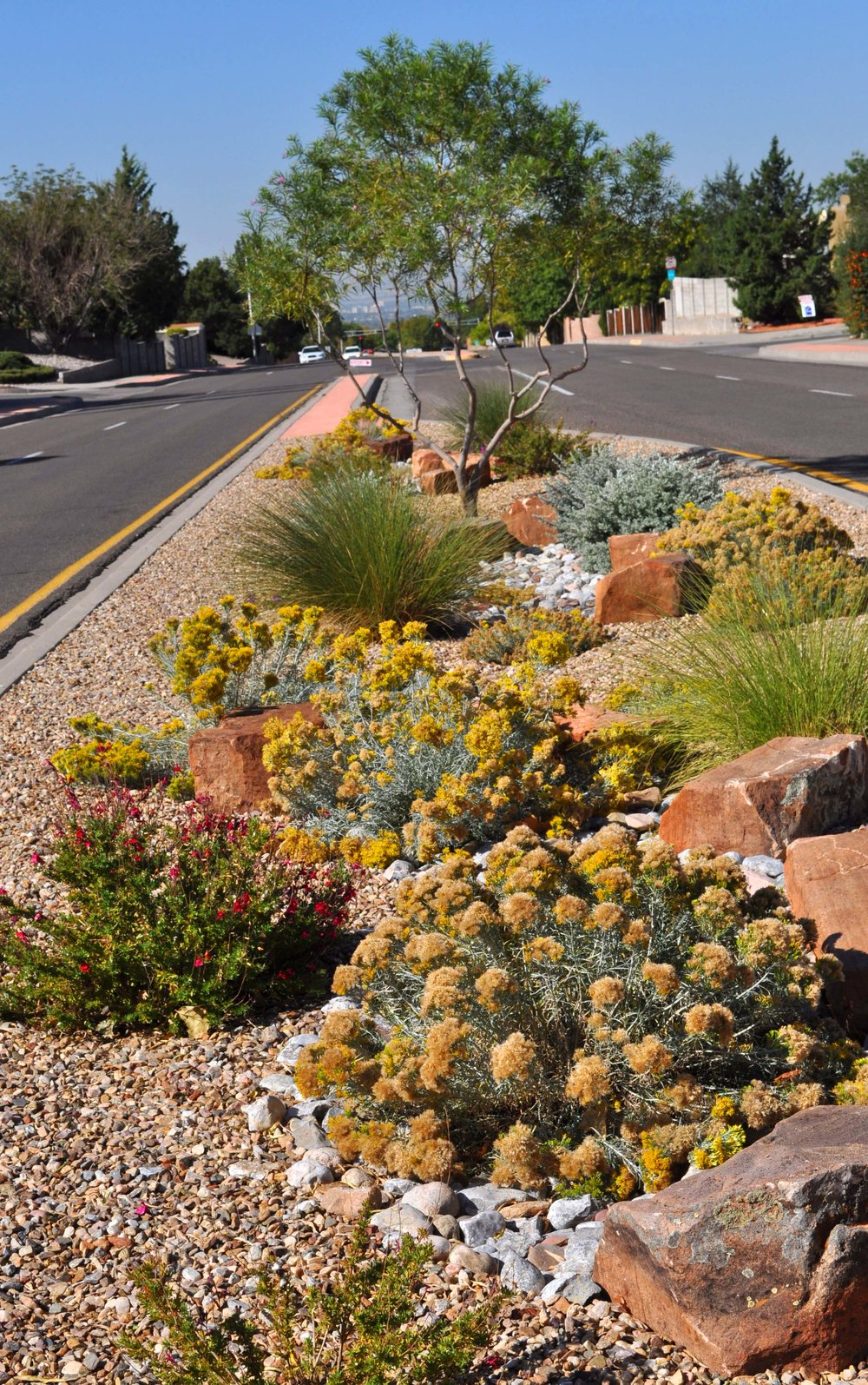 ABQ Median Prototypes -