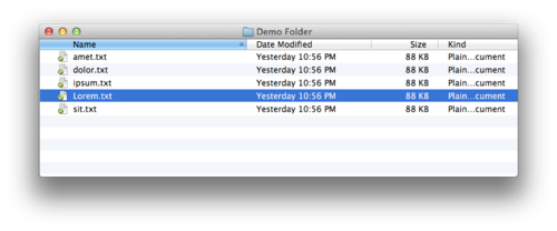 Contents of a folder in Finder's list view