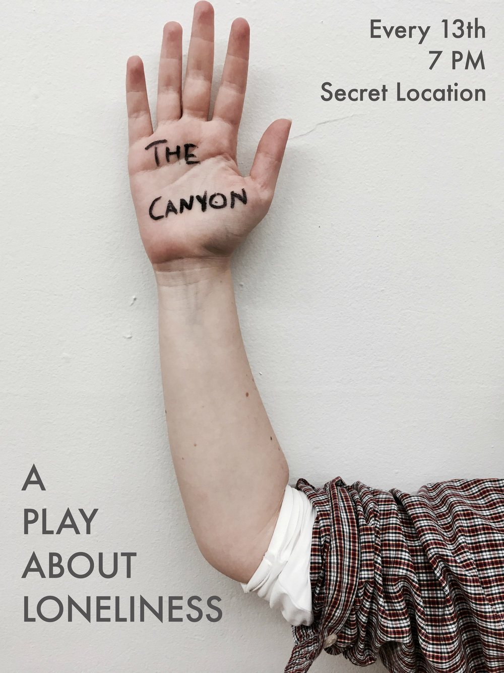 THE CANYON - Full Poster.jpg
