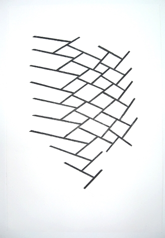 "Lamella No. 8 , 2010, charcoal, wax crayon, 20"" x 30"""