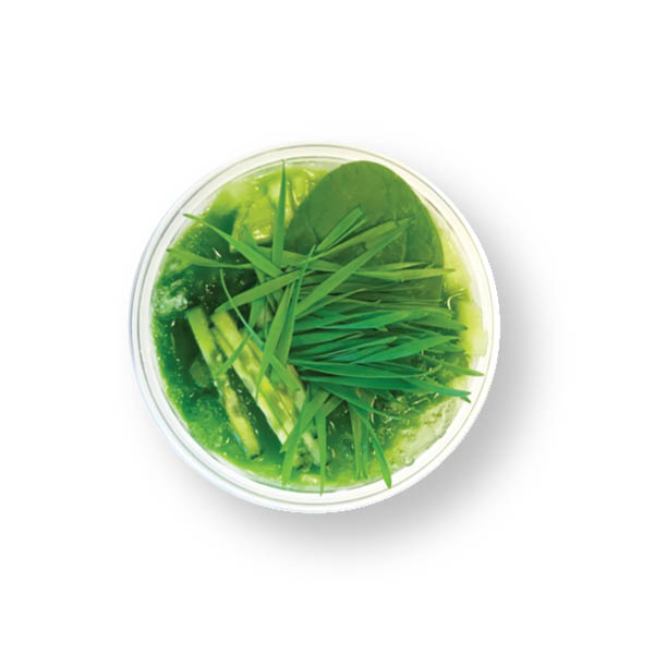 16ozGREEN MACHINE  $9.5  A shot of wheatgrass, cucumber, celery, kale, spinach, parsley, lemon.