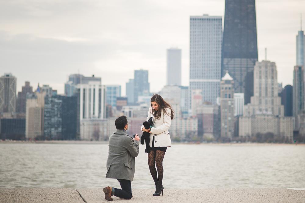 FLYTOGRAPHER - Chicago Proposal Photographer