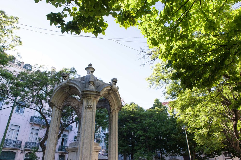 Flytographer: Gonçalo C. in Lisbon