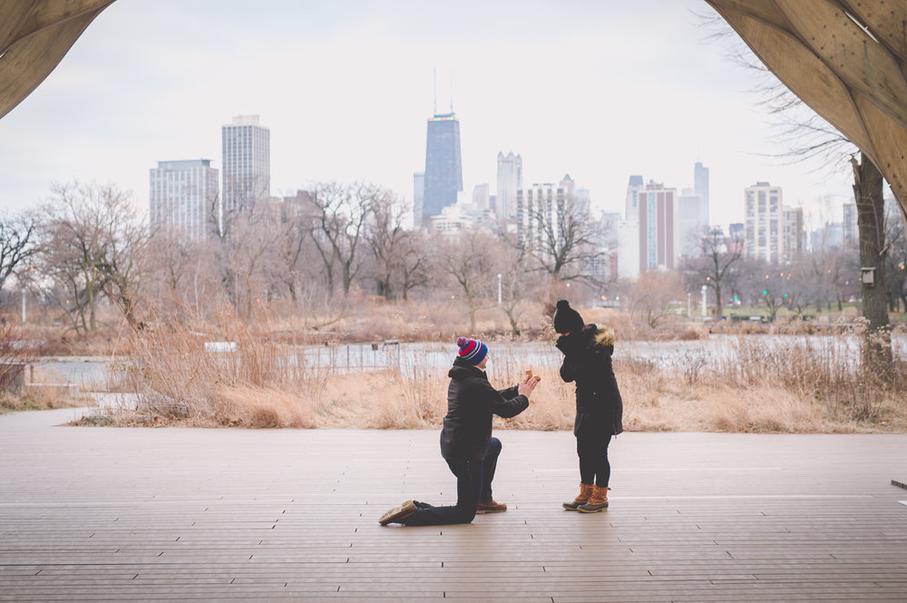 chicago proposal photographer flytographer