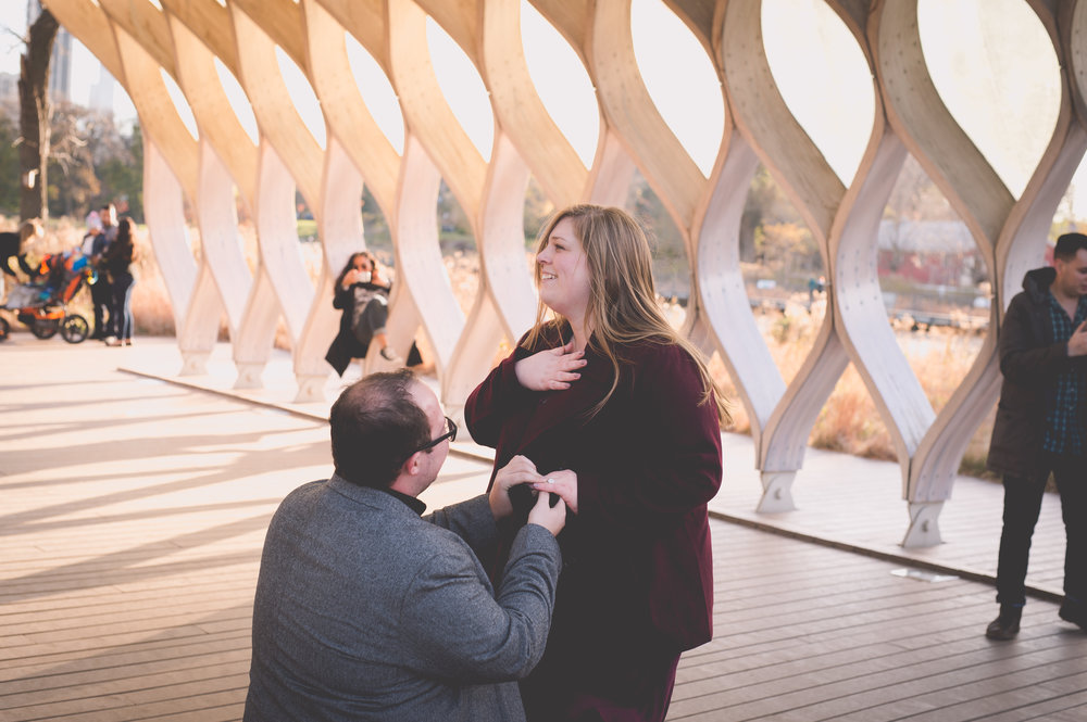 chicago surprise proposal photographer