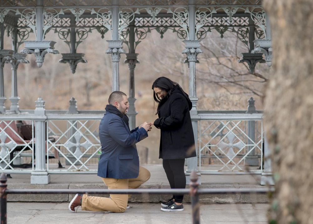 NYC proposal photographer central park
