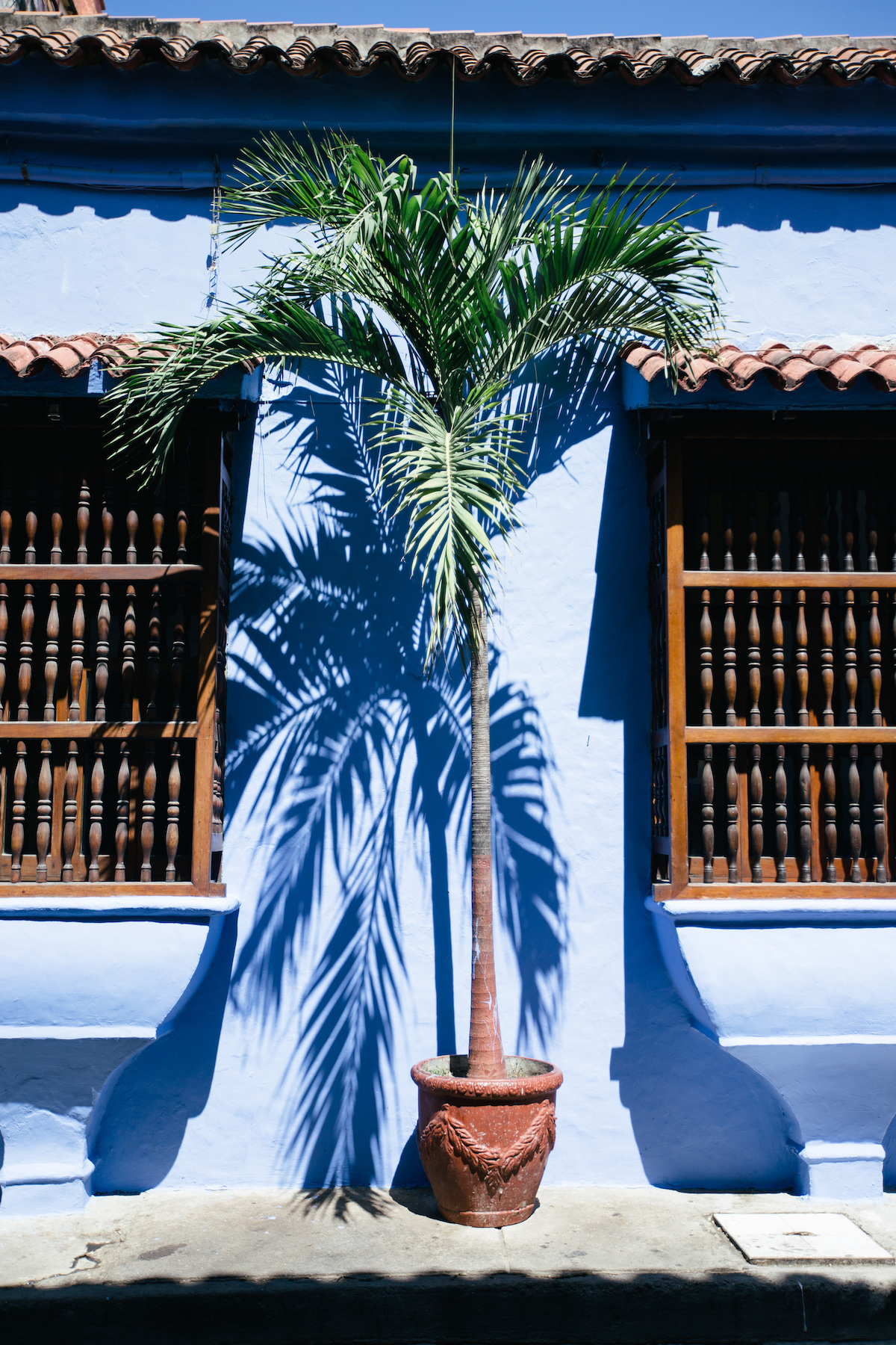 Cartagena is full of colourful Spanish colonial buildings, many with gorgeous bougainvillea dripping off balconies.