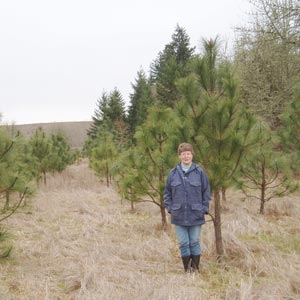 Ardis Schroeder with Ponderosa pine planting.