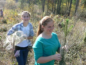 Local 4-H club helps protect some young trees
